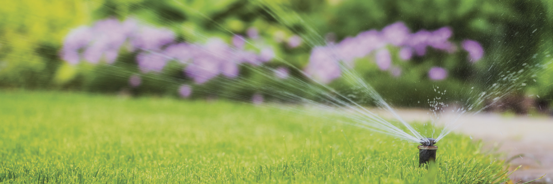 SLIDER_irrigation-02
